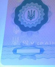 Диплом - свечение УФ (Докучаевское (Коммунист))